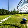 Wuhan Hankou jiangtan park scenery 3——the mushroom in Meadow