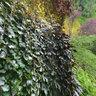 The Butchart Gardens, Victoria, BC, Canada