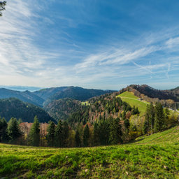 Between Schindelberg and Strahlegg 2