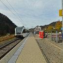 The Train to Rüti ZH arrives in Steg ZH