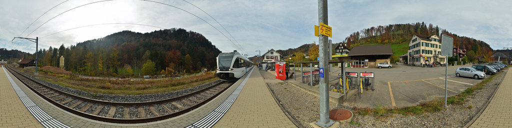 The Train to Rüti ZH arrives in Steg ZH