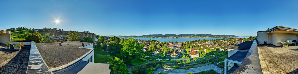 View over the Lake of Zurich