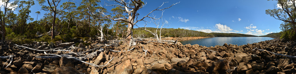 Lake Fenton in the Mount Field National Park, Tasmania