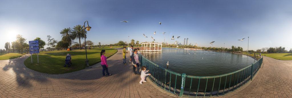 Al Safa Park Dubai UAE 360 Panorama   360Cities
