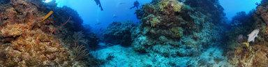 underwater-canyon