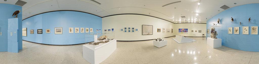 Enterprise Square Gallery, medium room