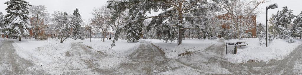 Main Quad in Winter