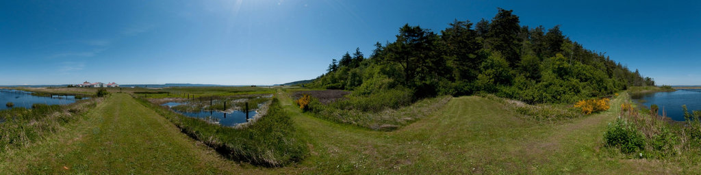 Rifle Range Firing Line - Fort Flagler State Park, Washington