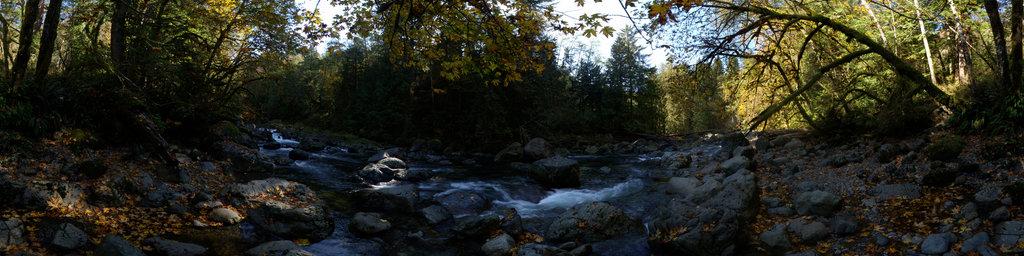 Snoqualimie River - Olallie State Park, Washington State