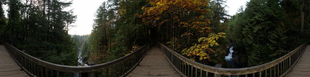 Twin Falls Bridge - Olallie State Park, Washington State