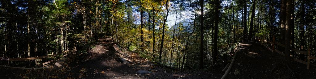 Twin Falls Trail - Olallie State Park, Washington State